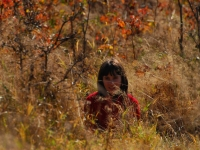Nowy Świat - kolory jesieni